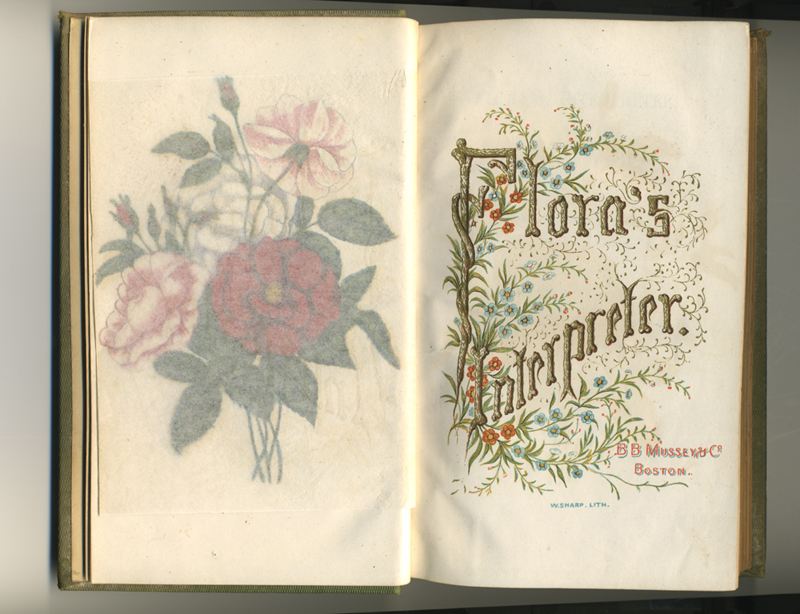Flora's Interpreter