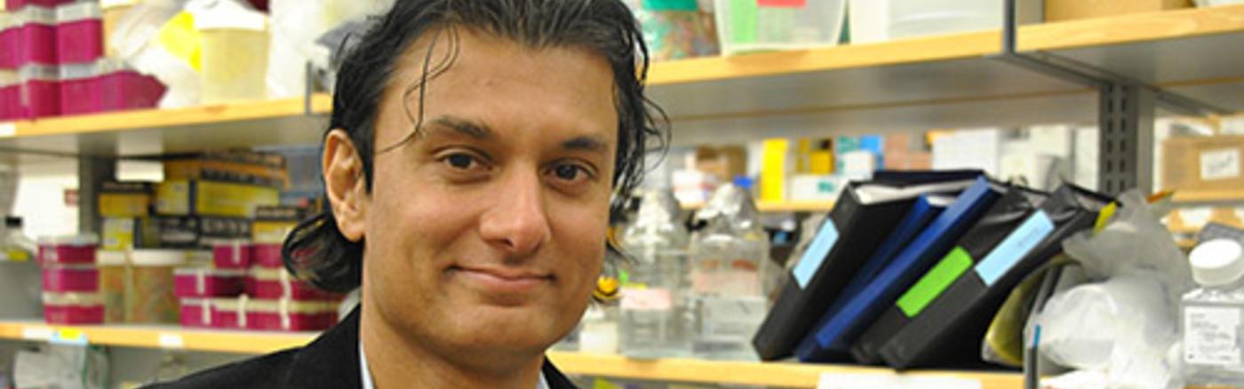 Navdeep Chandel, Ph.D.