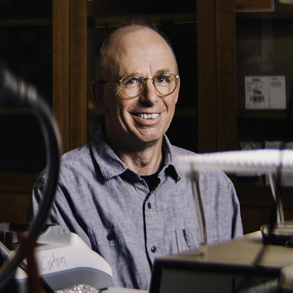 Andrew Caton, Ph.D.