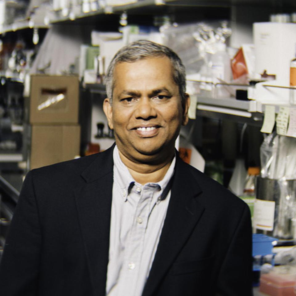 Kar Muthumani, Ph.D.