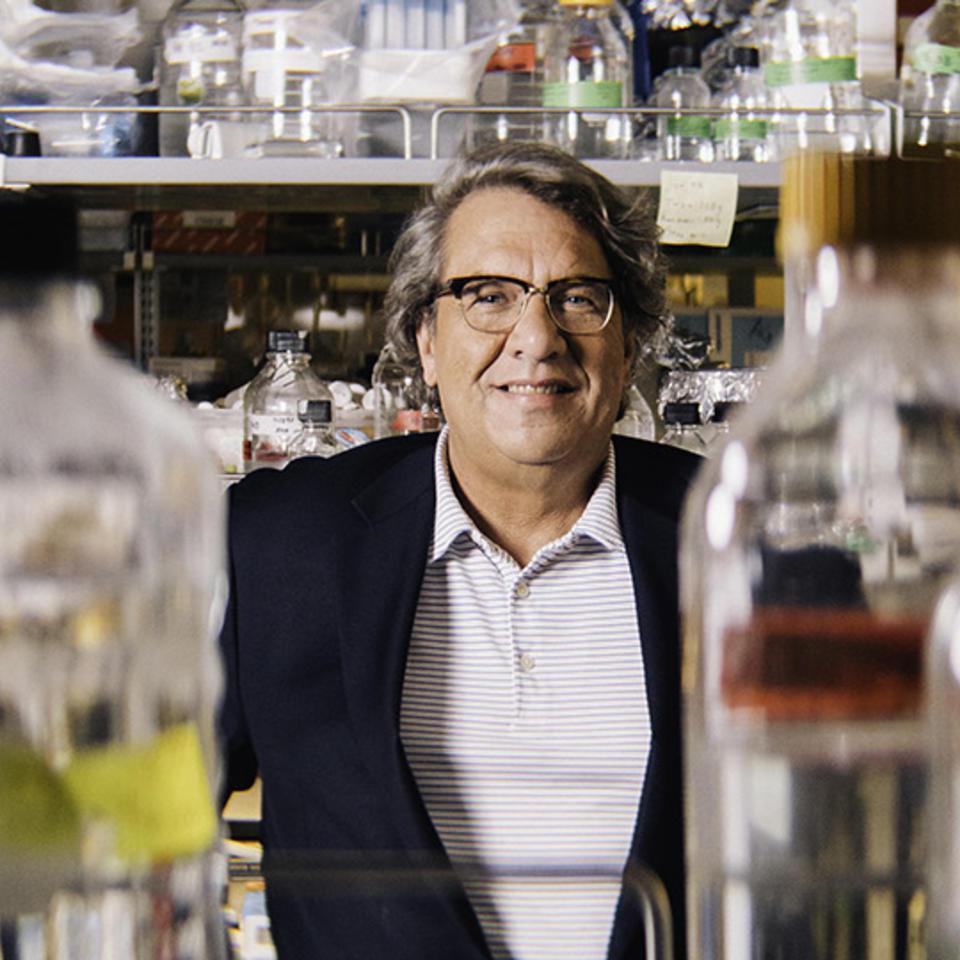 Frank J. Rauscher, III, Ph.D.
