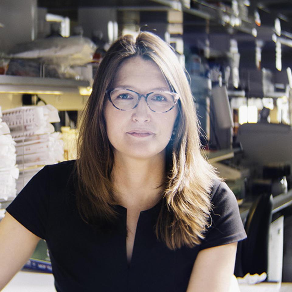 Erica Stone, Ph.D.