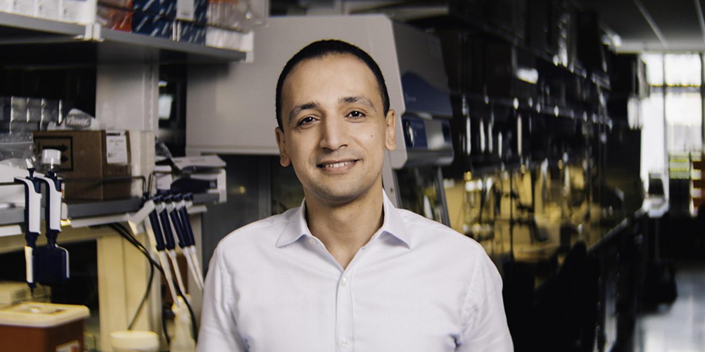 Mohamed Abdel-Mohsen, Ph.D.
