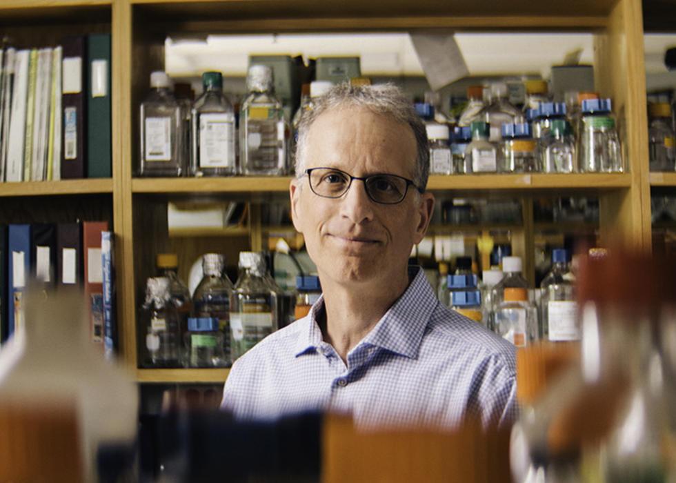 Paul Lieberman, Ph.D.