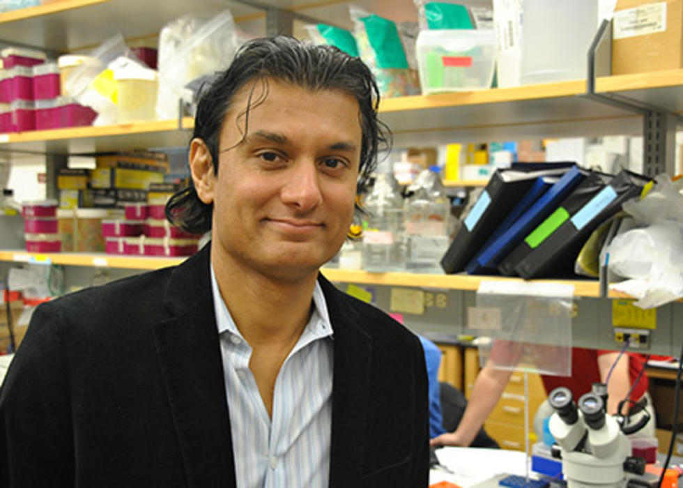 Navdeep Chandel, Ph.D.