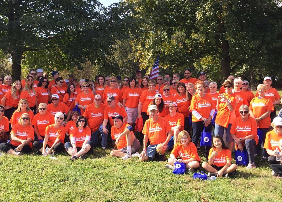 Melanoma Walk Group 2017