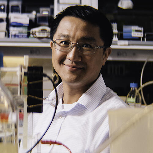 Chih-Chi Andrew Hu, Ph.D.