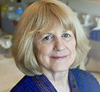 Mary-Claire King, Ph.D.