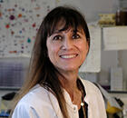 Corine Bertolotto, Ph.D.