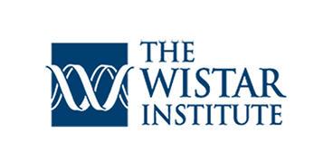 wistar logo